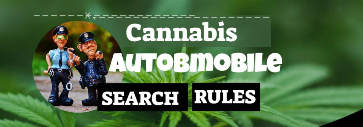 Cannabis Automobile search rules 2020 www.micannabislawyer.com