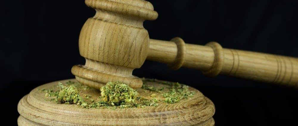 marijuana attorney michigan cannabis lawyers www.micannabislawyer.com