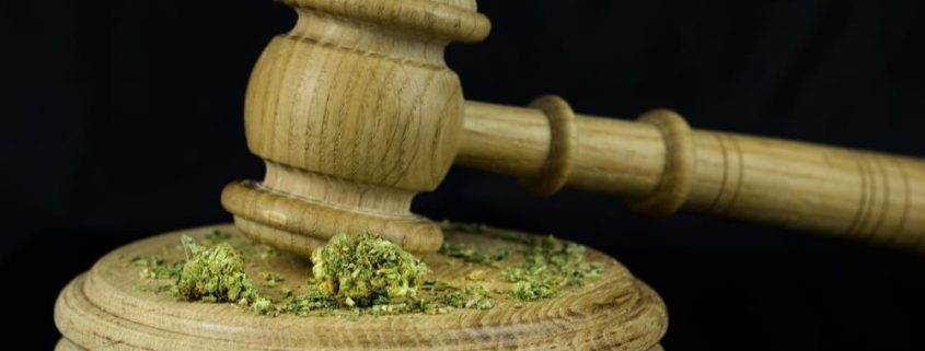 marijuana attorney michigan cannabis lawyers www.micannabislawyer.com