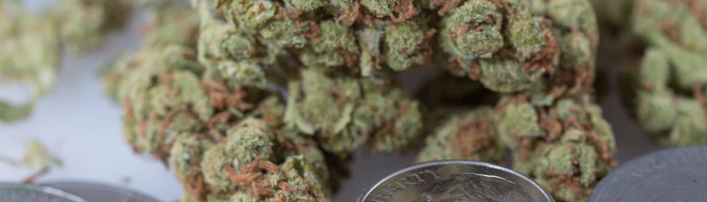 Recreational marijuana in Michigan www.michigancannabislawyer.com